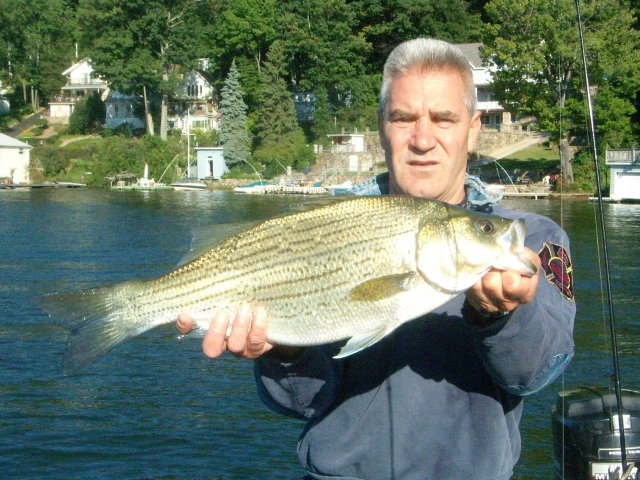 for Ohio river fishing report